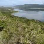 The Goukamma Trail Run